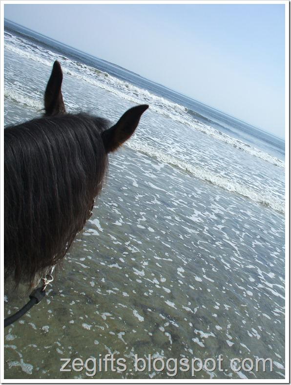 April10-Beach 011