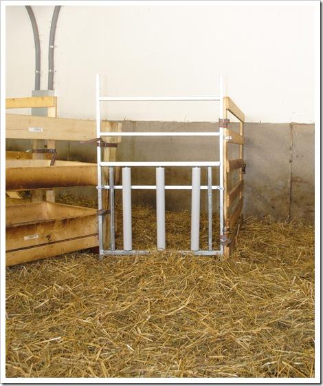 Lammkammargrind 2