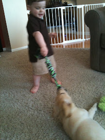 Josh playing with Remy
