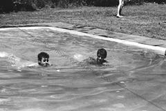 1964_Bearsville_swim_by_Gahr_1