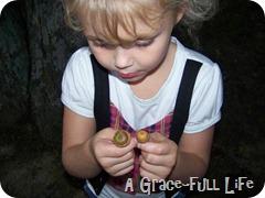 found acorns