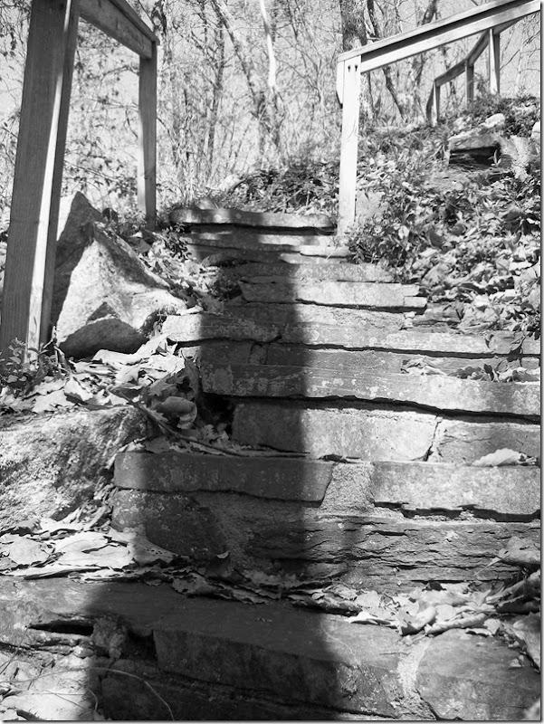 steps b-w vers