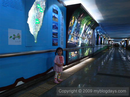 Evelyn在花蓮火車後站的旅遊走廊