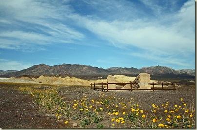 Desert Gold 2