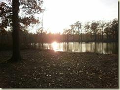Jackson MS state park dec22 009