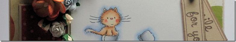 snpcats1a