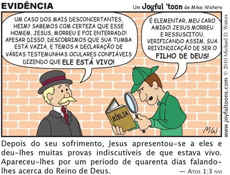 Joyful 'toon 156_Evidence PT.BR