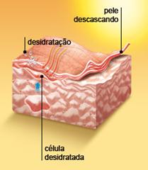 Pele descasca 3