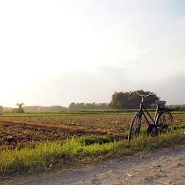 menunggu sang pemilik by Meylan Natalia - Transportation Bicycles