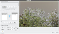 The editing panel allows you to line up multiple images and also crop and de-ghost images