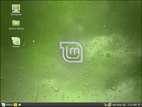 The desktop after loading from the live CD. All the usual stuff that mint users are used to.