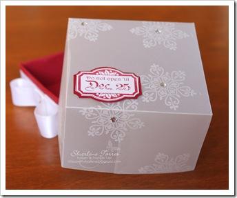 Christmas box 2A
