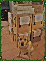 MAx with boxes