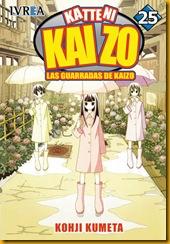 Kaizo 25