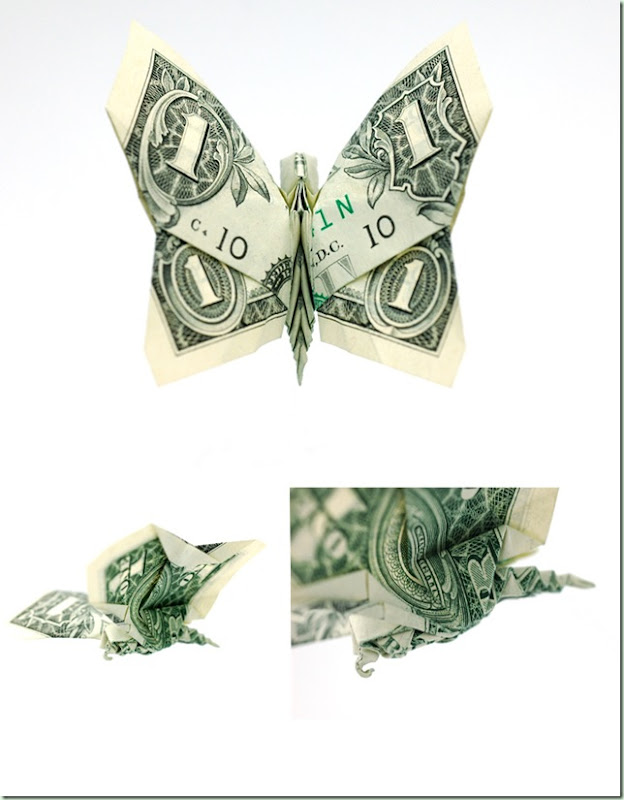 One_Dollar_Butterfly_by_orudorumagi11