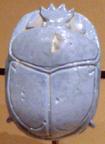 cuore dello scarabeo