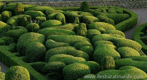 labirinto  Gardens of Marqueyssa (3)