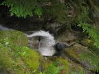 Cypress Falls Hike
