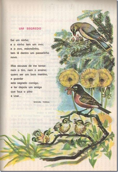 livro escolar vidas me flor sn p29