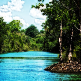 Sirena River, Osa Peninsula, Costa Rica by Stan Lupo - Landscapes Waterscapes ( osa, painterly, waterscape, sirena river, costa rica, landscape, glow, river,  )