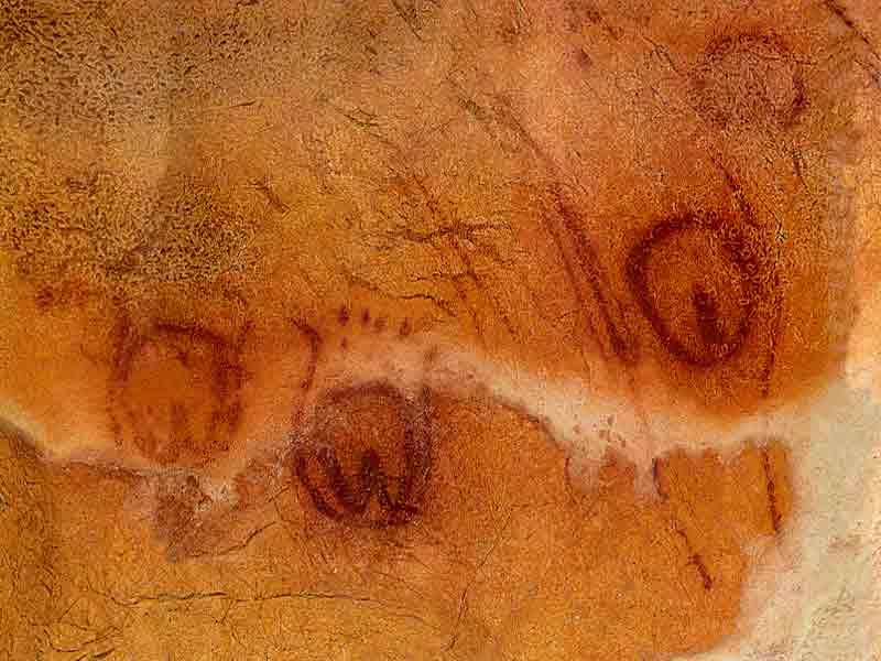 Vulvas na cova de Tito Bustillo, Asturias