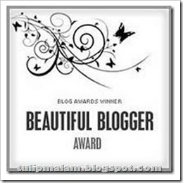 beautifulbloggeraward_thumb2