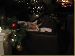 Christmas 026