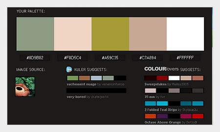 tips pemilihan warna untuk desain grafis menggunakan pictaculous