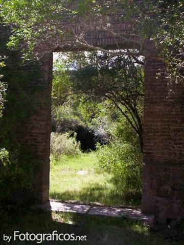 puerta-bosque