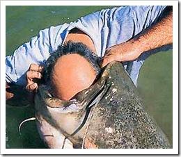 Анекдоти про рибалку. Гумор про рибаків. Історії