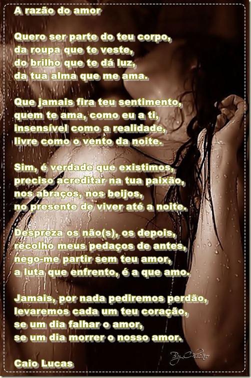 a_razao_do_amor
