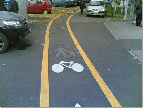 pista bicicleta (4)