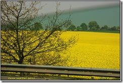 Roadtrip Aberystwyth D50  22-04-2011 10-56-27
