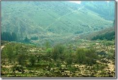 Roadtrip Aberystwyth D50  22-04-2011 13-52-25