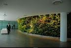qantas_lounge_sydney_3.jpg