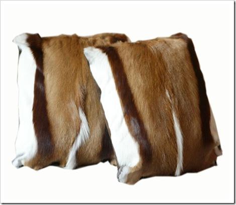 Cushions-Springbok