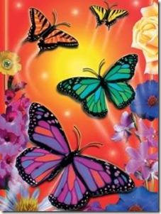 Butterflies-34[1]