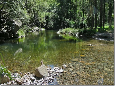 20090307-12-05-21-cunnawarra-national-park-georges-creek