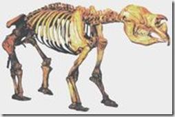 190px-Diprotodon