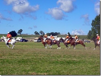 Guyra polocrosse