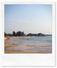 looking south-patnem-beach-canacona-goa-india