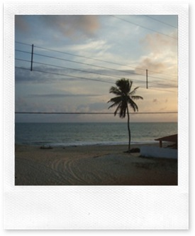 aluga se chale p temporada frente p mar na praia de muriu n__1355BF_12
