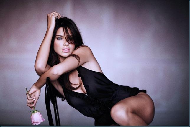 adriana lima - victoria secret catalog lingerie 361