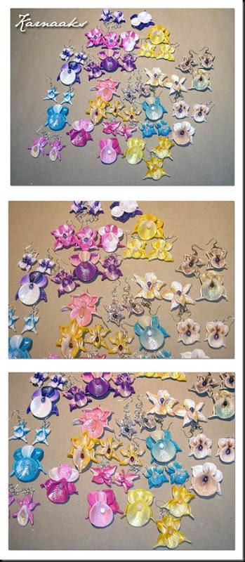 nov 11 orhideed solarsise KOOND