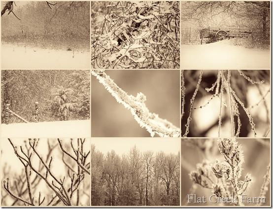 snowdays_softnfaded