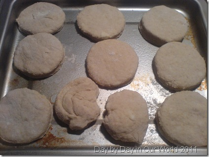 Biscuits Cut and Ready to Bake