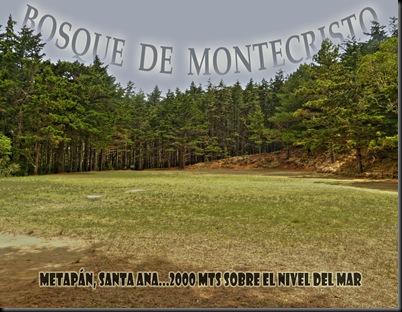 Montecristo_Portada