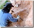 William Nava escavando