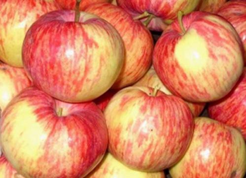 Яблочки для пирога