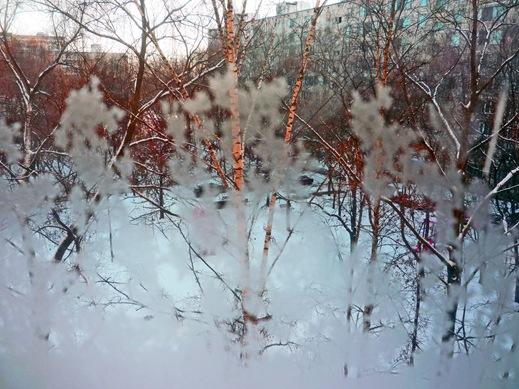 За моим окном 3